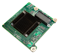 Teradici PCoIP Hardware Accelerator Card / APEX 2800 PCoIP Server Offload Card